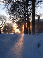 2015-02-15 Cambridge Snow Trek 104