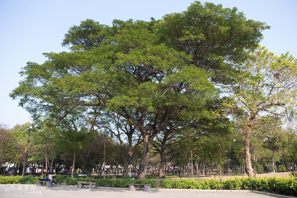 台南私藏景點-水萍塭公園 (18)