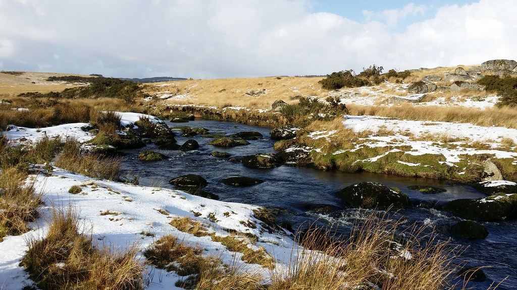 The Blackbrook River #sh #dartmoor