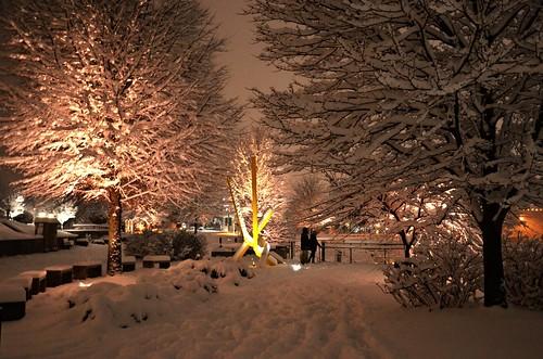 flickr tn latenight whitesnow blizzard wintertrees softlight hbm huntermuseum bluffviewartdistrict chattanoogatennessee footprintsinthesnow pinkhues freshsnowfall goldensculpture lightsaglow happybenchmondaymeetswinterwonderland