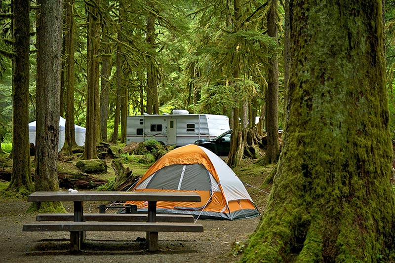 Provincial Park Campground on Vancouver Island, British Columbia, Canada.