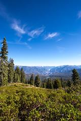 Kings Canyon & Sequoia - 112