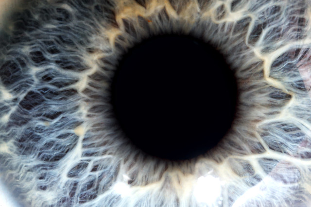 Blue Iris Images, Self-Captured Portraits
