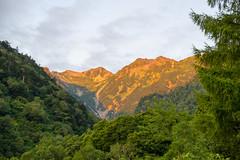 朝焼けの針ノ木岳、スバリ岳