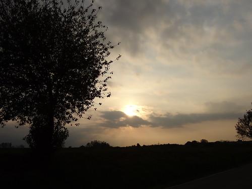 Sonnenuntergang Rhein im Sonnenschein