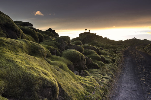 sunset lava iceland moss