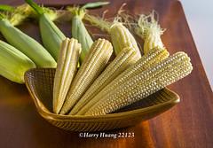 Harry_22123,玉米筍,玉米,甜玉米,珍珠筍,�…