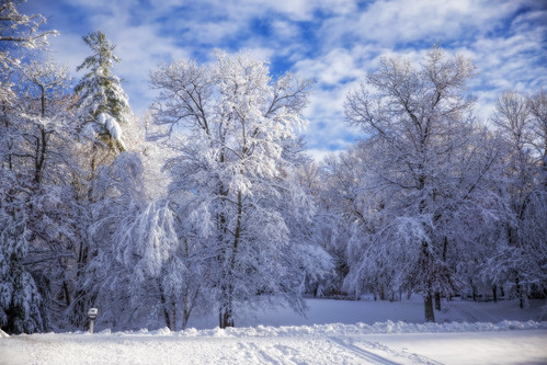 winter snow cold newengland newhampshire canondslr snowscene winterscene canon6d londonderrynewhampshire