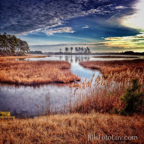 park travel sky heron water clouds virginia visit wetlands marsh chincoteaguenationalwildliferefugefwsvisitorcenter
