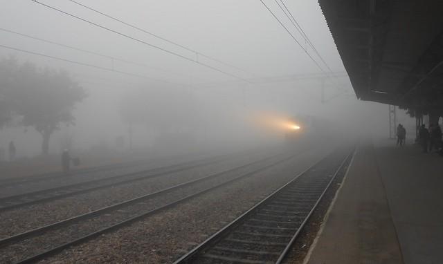 Winter fog at Tapri, Saharanpur