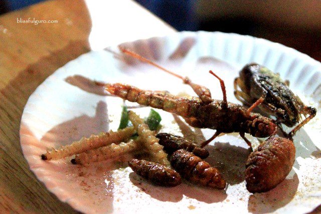 Fried Insects Bangkok