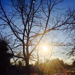 17 February 2015 #sunset #samespotforayear