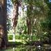 Las Alazanas - Rioverde SLP México 120906 1617 4204