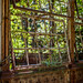 Steampunk Greenhouse (05) by Maestro-Photography