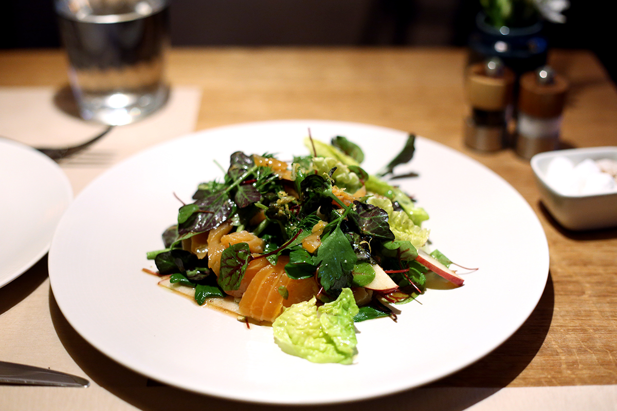 smoked-trout-salad