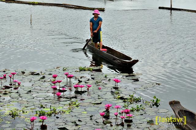 Man on canoe