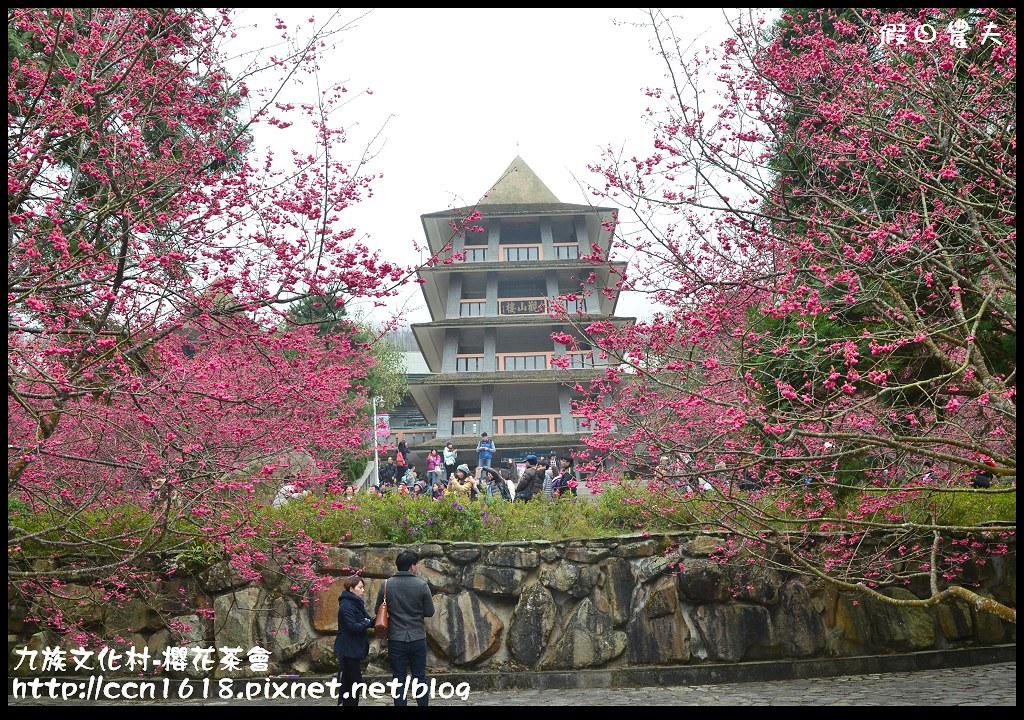 九族文化村-櫻花茶會DSC_4523