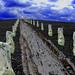 Avebury Hil - stone ave - bw_edited-2