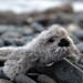 seal pup01 by ladybirddollstudio