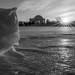 icy Tidal Basin sunrise, cropped b/w