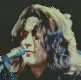 Rory Gallagher - on stage