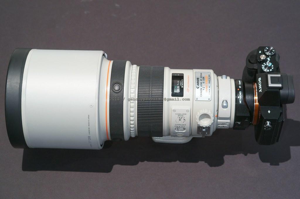 bDSC00268