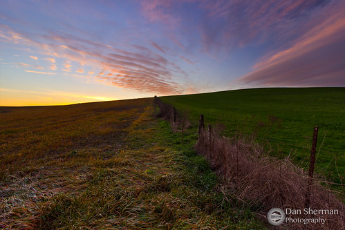sunset sky green field grass clouds oregon rural fence landscape spring seasons unitedstates farm farmland valley pacificnorthwest fields independence pnw willamette willamettevalley oregonfarmland ruralscene rurallandscape independenceoregon buenavistaoregon midwillamettevalley