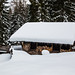 Verschneite Hütte an der Rodelbahn zur Kala Alm