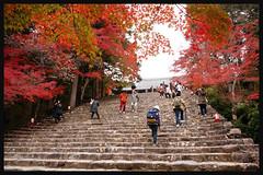 日本京都[高雄]-神護寺.58