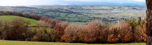 autumn trees wales landscape carmarthenshire pan