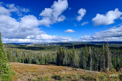 landscape nikon yellowstonenationalpark ynp d800