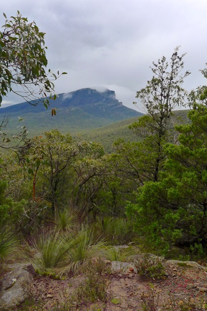 Looking across to Mount Abrupt from Mount Sturgeon
