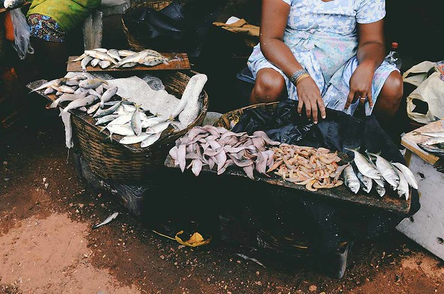 Goa -Fish Market| A Brown Table