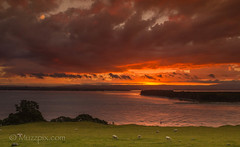muzzpix-nz posted a photo:Facebook    | 500px  | WebsiteCan only be in New Zealand ....