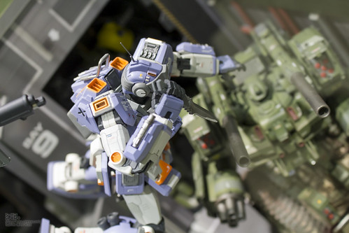 GBWC2014_World_representative_exhibitions-99