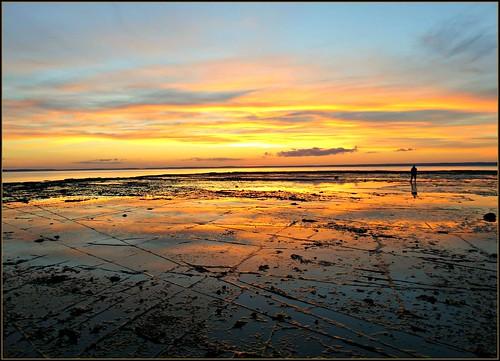 new sunrise year 2015