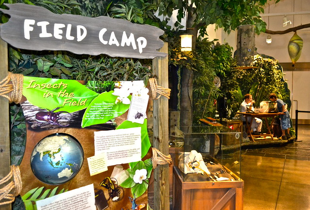 Audubon Butterfly Garden and Insectarium - interactive