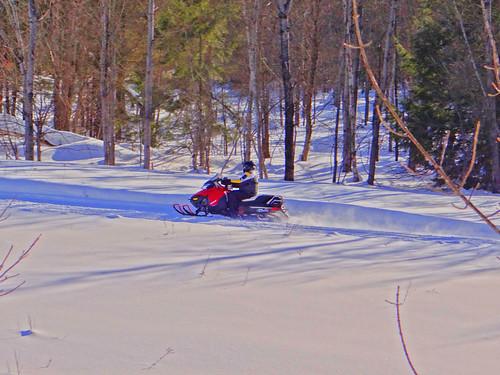 winter snow cold forest fun snowmobile