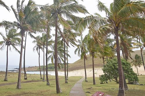 【写真】2015 世界一周 : アナケナビーチ/2021-04-05/PICT8645