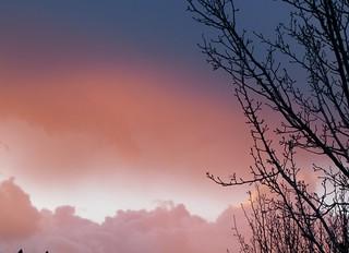 Sunset Fade