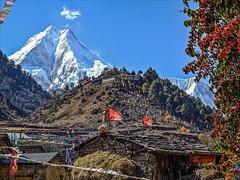 Plum Monastery Buddhist