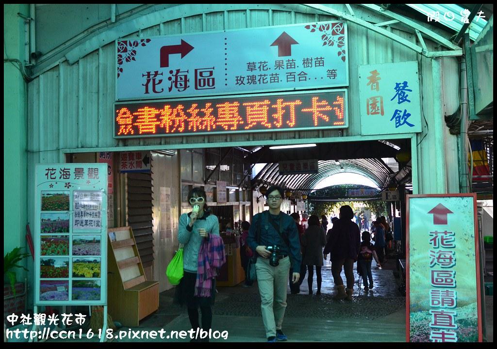 中社觀光花市DSC_1669