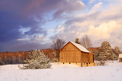 Golden Winter Barn