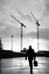 """CRANES and RAIN""; Cardiff CF10."