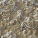Flood Mud by raya6789
