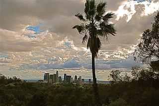 DTLA skyline from Elysian Park