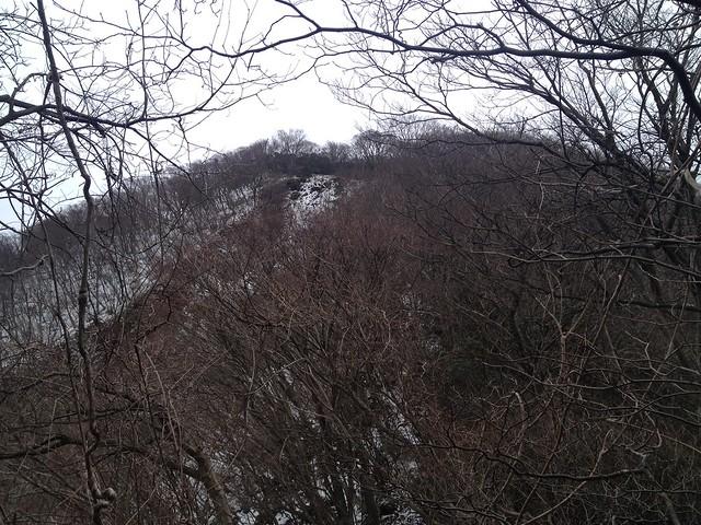 入道ヶ岳 イワクラ尾根より山頂