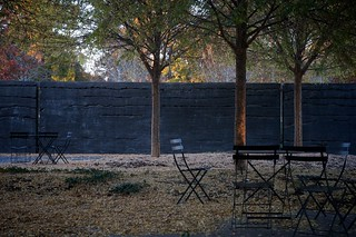 Grove and chairs/Raleigh