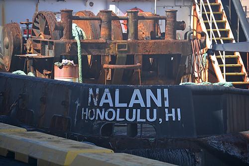 14 01.19 Nalani name