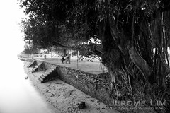 JeromeLim-7108